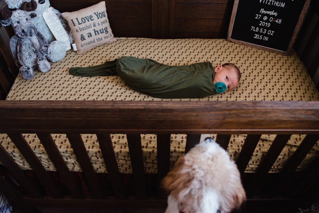 Baby laying in crib while dog looks on