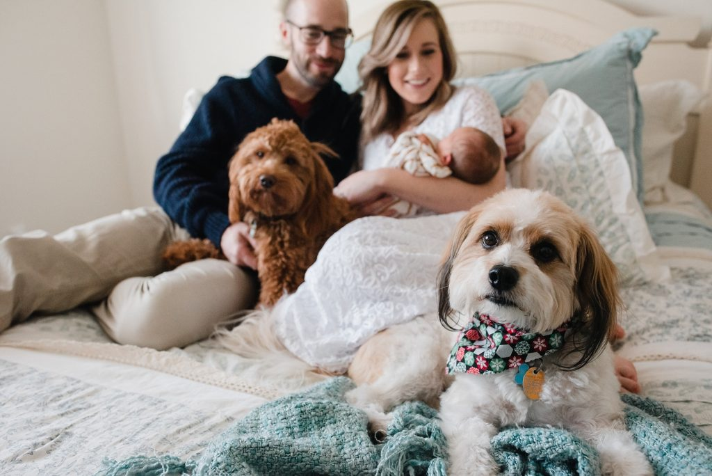 Family sitting on bed with dogs